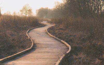 Prendre des décisions : les 5 erreurs à éviter
